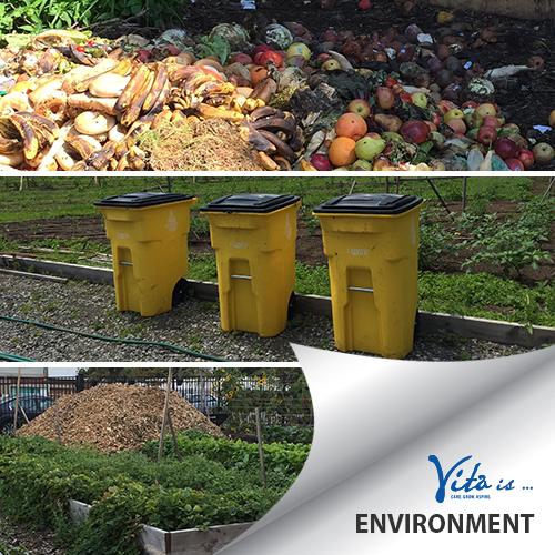 Vita-Is-Environment-v2