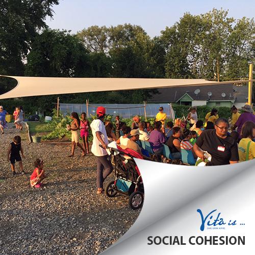 Vita-Is-SocialCohesion