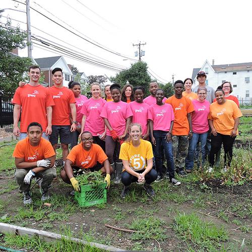 Fairgate Farm Volunteers
